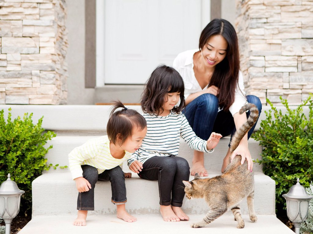 Mother sitting on doorsteps with two daughters 2_3, 4_5 and playing with cat : Stock Photo