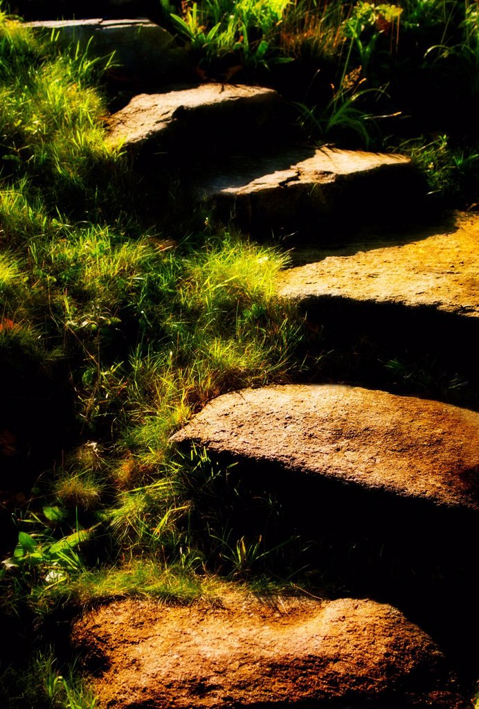Stock Photo: 1795R-70684 Stone steps in morning light