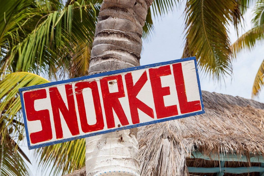Stock Photo: 1795R-70971 Mexico, Quintana Roo, Yucatan Peninsula, Isla Mujeres, Sign hanging on palm tree
