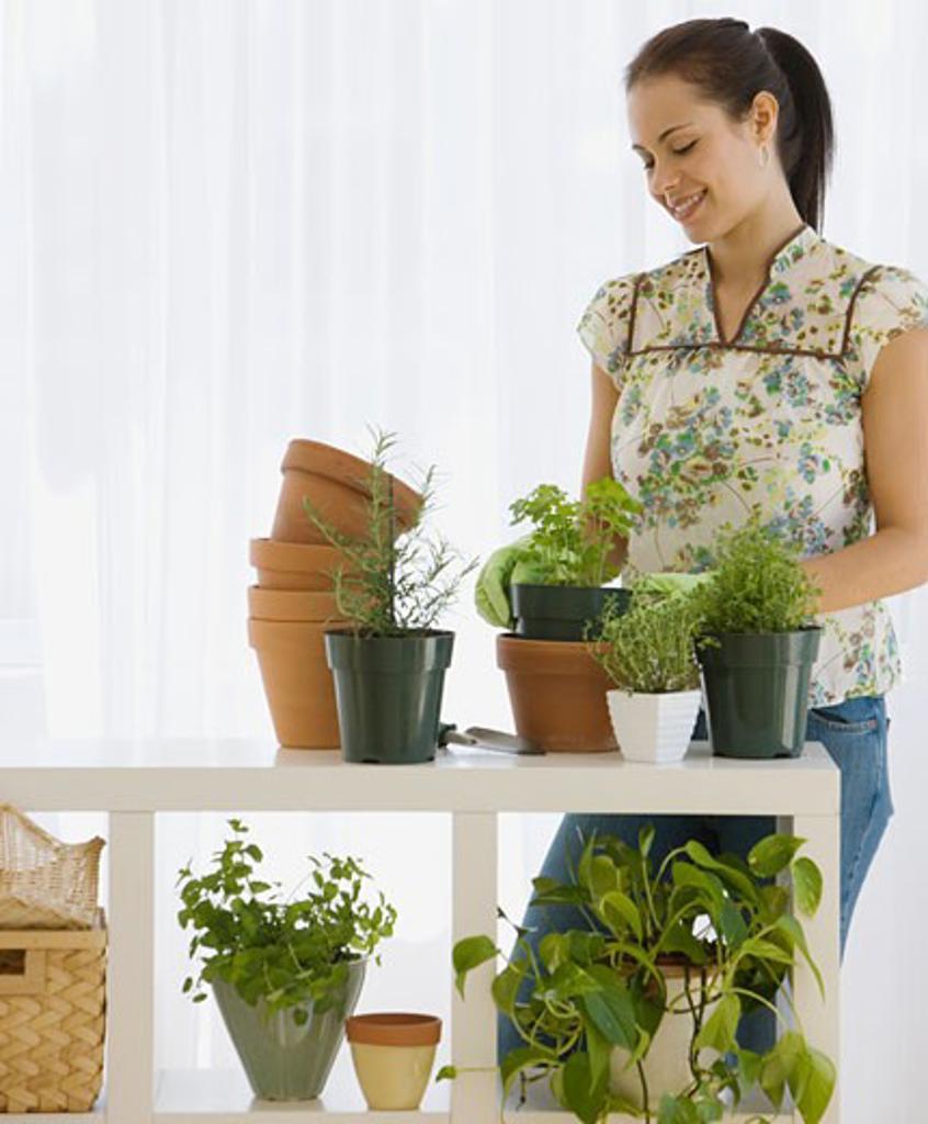 Stock Photo: 1795R-7169 Woman potting plants