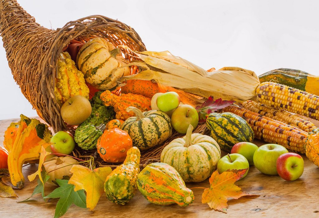Still life with pumpkins, apples and corn : Stock Photo