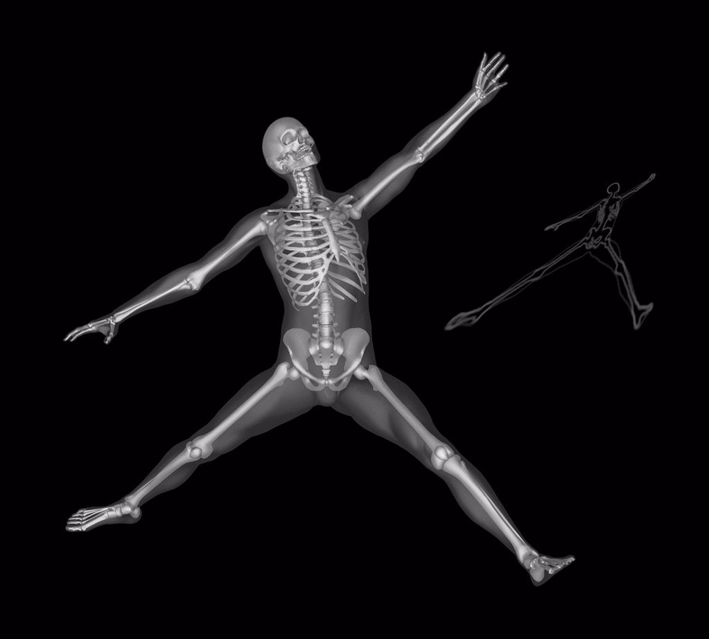 Stock Photo: 1795R-80947 Human skeleton stretching