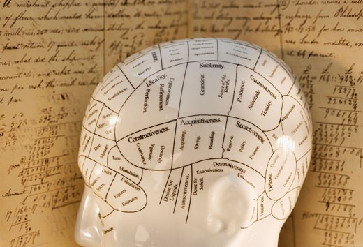 Stock Photo: 1795R-8607 Close up of Phrenology head diagram