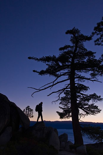 Silhouette of a man standing on a boulder, Lake Tahoe, California, USA : Stock Photo