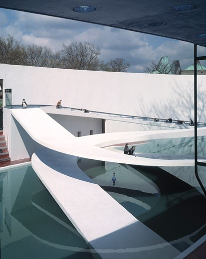 PENGUIN POOL, LONDON ZOO, REGENTS PARK, LONDON, NW1 CAMDEN TOWN, UNITED KINGDOM, GENERAL VIEW, BERTHOLD LUBETKIN : Stock Photo