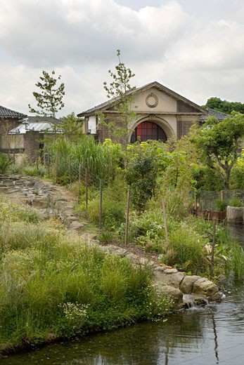 Stock Photo: 1801-21075 GORILLA KINGDOM, LONDON ZOO, REGENTS PARK, LONDON, NW1 CAMDEN TOWN, UNITED KINGDOM, LANDSCAPING WITH STREAM, PROCTOR MATTHEWS ARCHITECTS