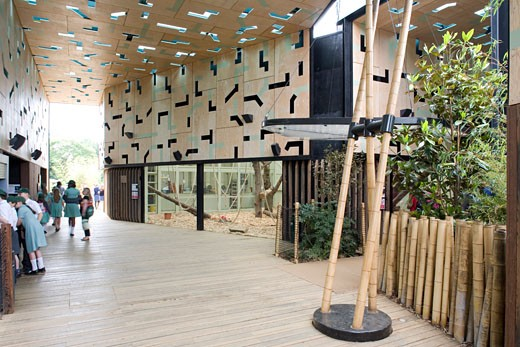 GORILLA KINGDOM, LONDON ZOO, REGENTS PARK, LONDON, NW1 CAMDEN TOWN, UNITED KINGDOM, SCHOOL PARTY IN THE SECOND PAVILION, PROCTOR MATTHEWS ARCHITECTS : Stock Photo