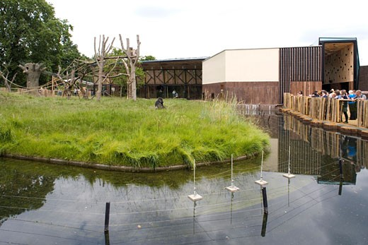GORILLA KINGDOM, LONDON ZOO, REGENTS PARK, LONDON, NW1 CAMDEN TOWN, UNITED KINGDOM, MOAT WITH PAVILION BEHIND, PROCTOR MATTHEWS ARCHITECTS : Stock Photo