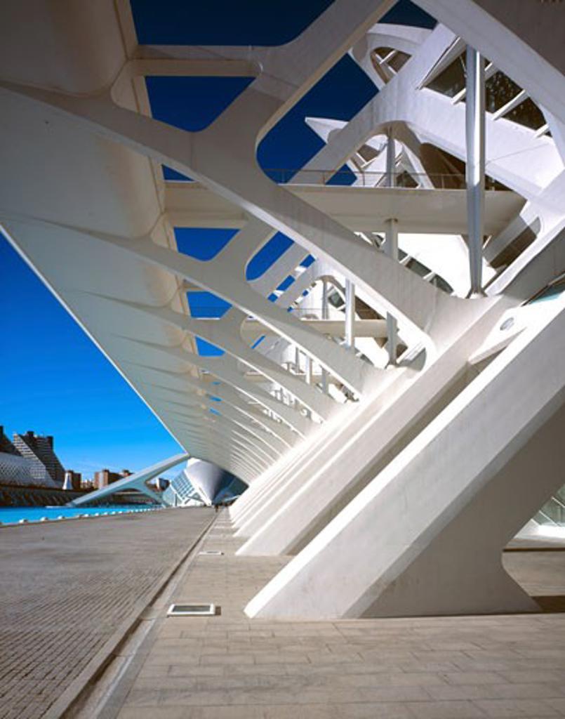 CITY OF ARTS AND SCIENCES, AVENIDA DEL TURIA, VALENCIA, SPAIN, DETAIL SHOWING CONCRETE COLUMNS, CALATRAVA : Stock Photo