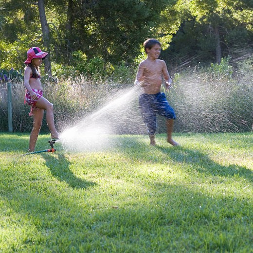 Young boy and girl playing with water in the garden : Stock Photo