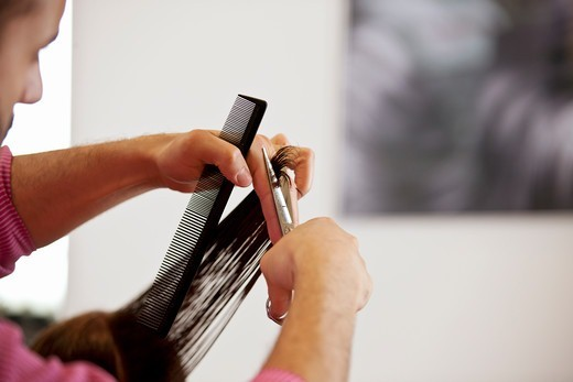A male hairdresser cutting his female clients long hair, close up : Stock Photo
