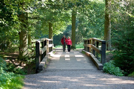 A mature couple walking over a footbridge in the countryside : Stock Photo