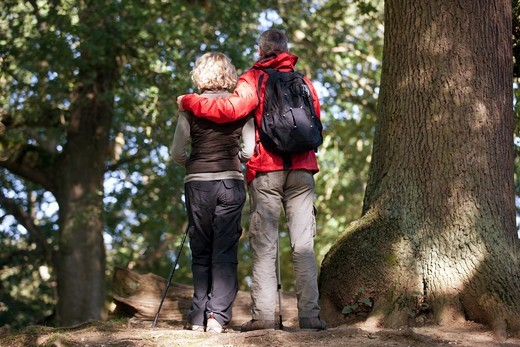Stock Photo: 1804R-21217 A mature couple standing in woodland looking at their surroundings, rear view