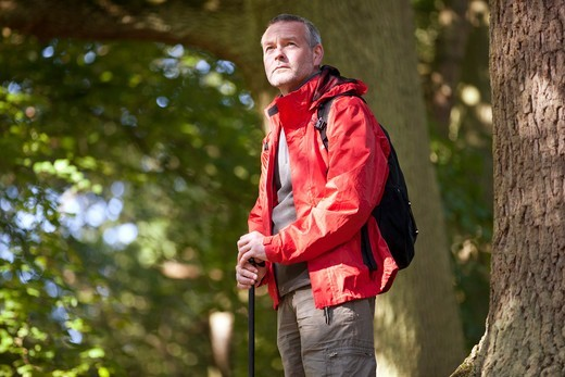 A mature man standing in woodland : Stock Photo
