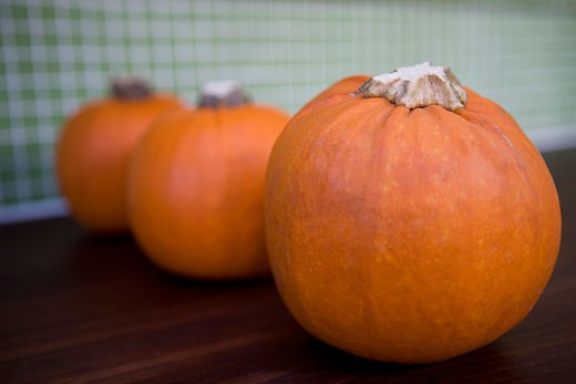 Row of orange Hallowe'en pumpkins on a kitchen counter : Stock Photo