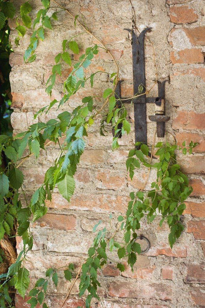 Plants growing alongside old brick castle : Stock Photo