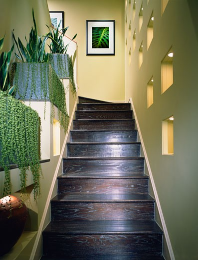 Stock Photo: 1806R-2226 Dark Hardwood Staircase