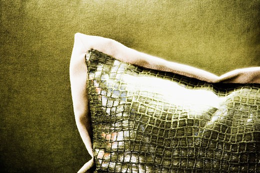Green Pillow on Green Couch : Stock Photo