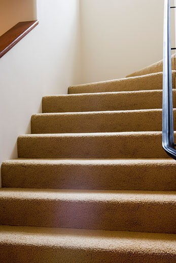 Detail of carpeted steps leading upward. : Stock Photo