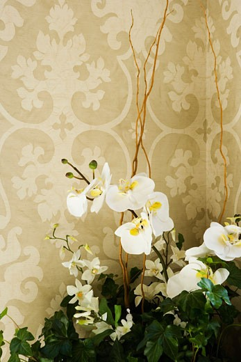 Artificial flowers in front of printed wall paper : Stock Photo