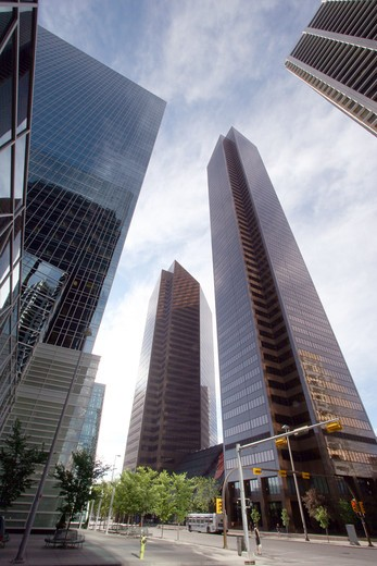 Stock Photo: 1807-381 Skyscrapers in a city, Calgary, Alberta, Canada