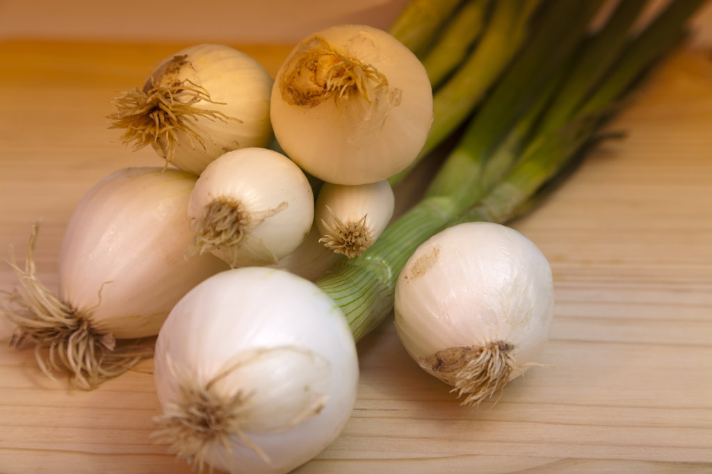 Close-up of spring onions : Stock Photo