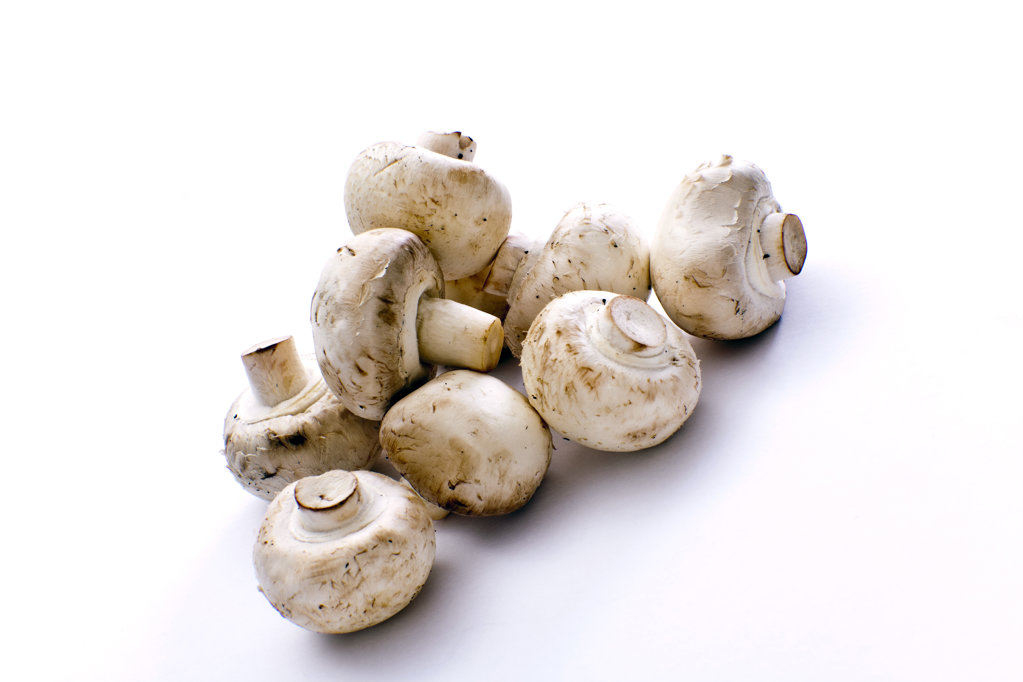 Stock Photo: 1807R-370 Champignons isolated on white background