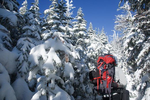 Stock Photo: 1809-12058 Appalachian Trail - Snowshoer on the Carter-Moriah Trail in winter conditions near Middle Carter Mountain in the White Mountains, New Hampshire USA