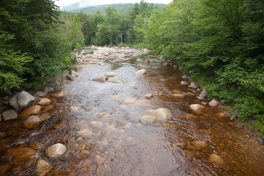 Stock Photo: 1809-13346 Pemigewasset Wilderness - Pemigewasset River from Thoreau Falls Trail.  Located in Lincoln, New Hampshire USA.