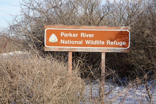 Parker River National Wildlife Refuge during the winter months. Located on Plum Island, Massachusetts, USA : Stock Photo
