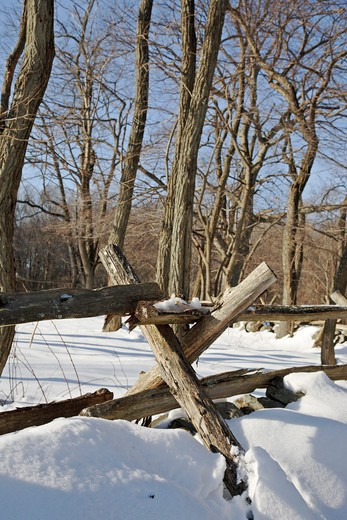 Minute Man National Historical Park...Wooden fence along the Battle Road Trail near the Hartwell Tavern during the winter months. Located in Lincoln, Massachusetts USA : Stock Photo