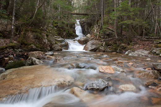 Crawford Notch State Park...Pearl Cascades during the spring months. Located on Crawford Brook next to the 	 Avalon Path in Bethlehem, New Hampshire USA : Stock Photo