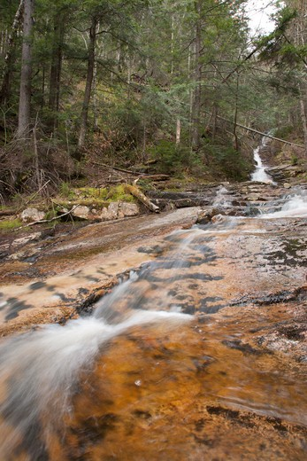 Stock Photo: 1809-15465 Crawford Notch State Park...Kedron Flume during the spring months. Located on Kedron Brook next to the 	 Kedron Flume Trail in Harts Location, New Hampshire USA
