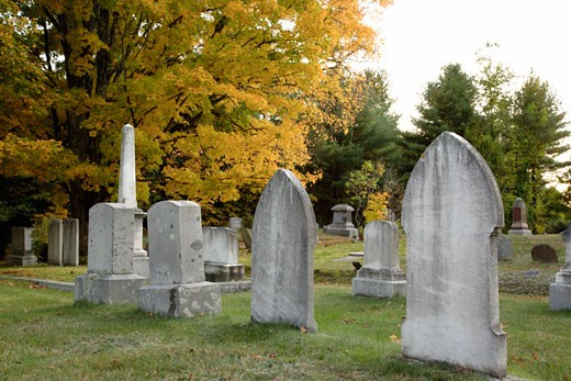 Prospect Cemetery : Stock Photo