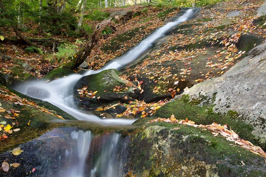 Stock Photo: 1809-16096 Kinsman Notch - Tributary of Lost River in Woodstock, New Hampshire USA during the autumn months