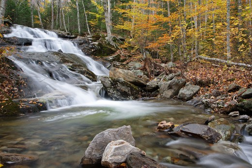 Stark Falls which are located along Stark Falls Brook in Woodstock, New Hampshire USA during the autumn months : Stock Photo