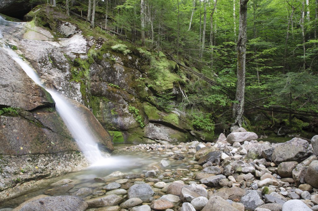 Stock Photo: 1809-17096 Lafayette Brook Scenic Area - Lafayette Brook Falls during the summer months. This waterfall is located along Lafayette Brook in the White Mountains, New Hampshire USA