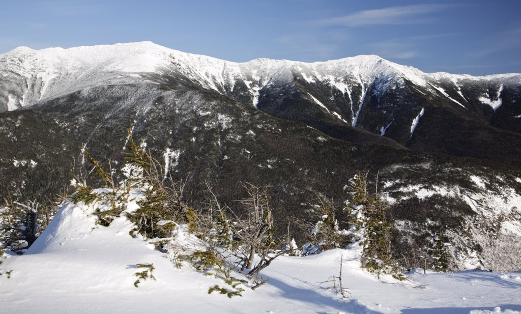 Stock Photo: 1809-17289 Franconia Notch State Park - Franconia Ridge from along Kinsman Ridge Trail in the White Mountains, New Hampshire USA. This trail leads to the summit of Cannon Mountain