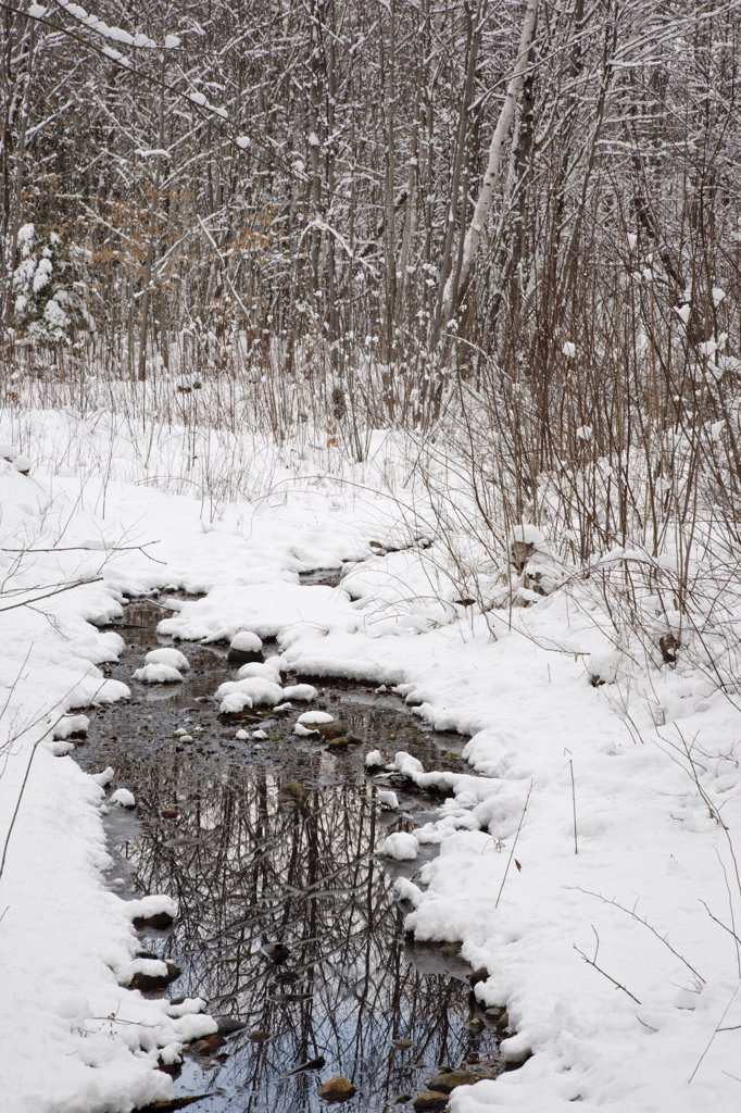 Small brook in Lincoln, New Hampshire USA after a snow storm : Stock Photo