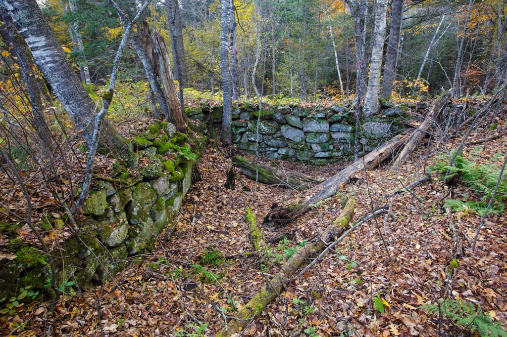 Stock Photo: 1809-17599 Remnants of Thornton Gore which was a old hill farm community in Thornton, New Hampshire USA. It was abandoned in the 19th century