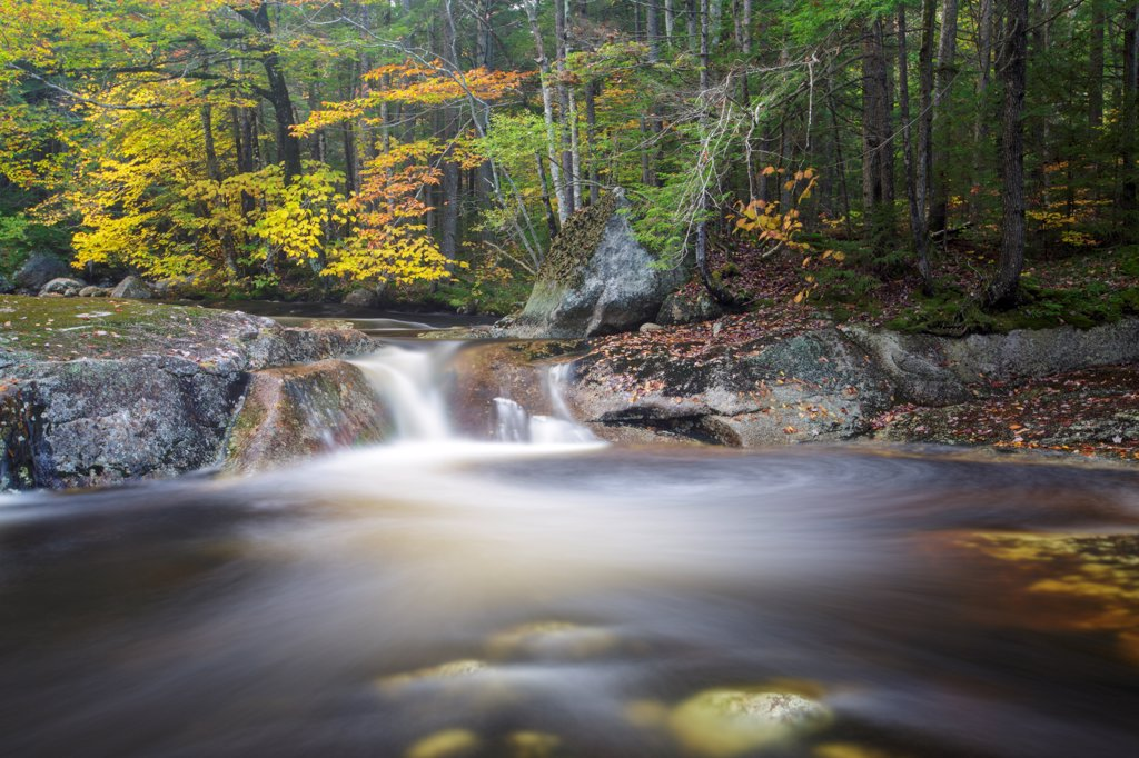 Stock Photo: 1809-17636 Harvard Brook in the White Mountains, New Hampshire USA during the atumn months