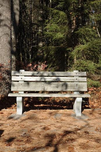 Rachel Carson National Wildlife Refuge : Stock Photo