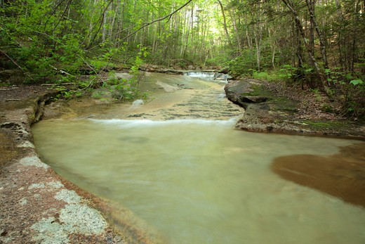 Crystal Brook in the Pemigewasset Wilderness of Lincoln, New Hampshire USA : Stock Photo