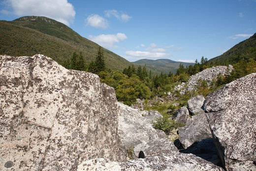 Zealand Notch  - Boulder field along the Zeacliff Trail during the summer months in the White Mountains, New Hampshire USA. Zeacliff Mountain is on the left : Stock Photo