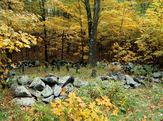 Graveyard at Pawtuckaway State Park in New Hampshire, USA : Stock Photo