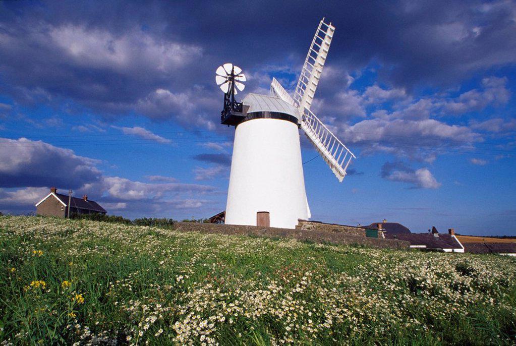 Stock Photo: 1812-10075 Ballycopeland Windmill, Millisle, County Down, Northern Ireland, Historic Irish windmill
