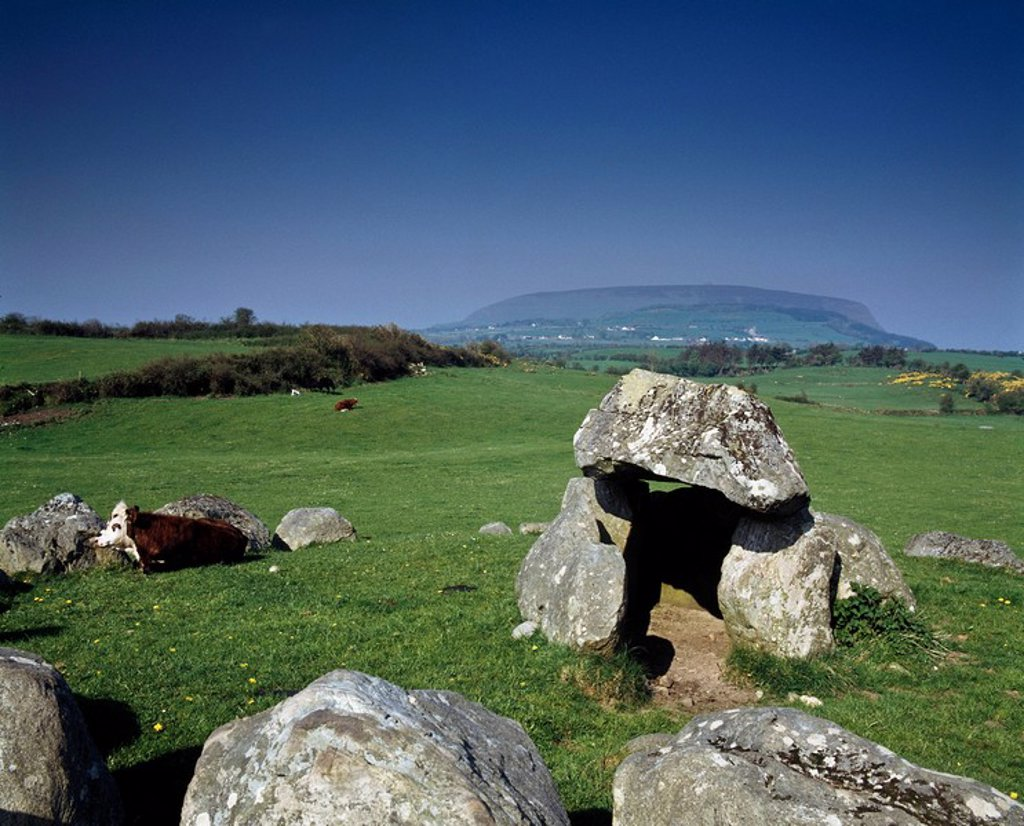 Stock Photo: 1812-10721 Megalithic tomb and stone circle