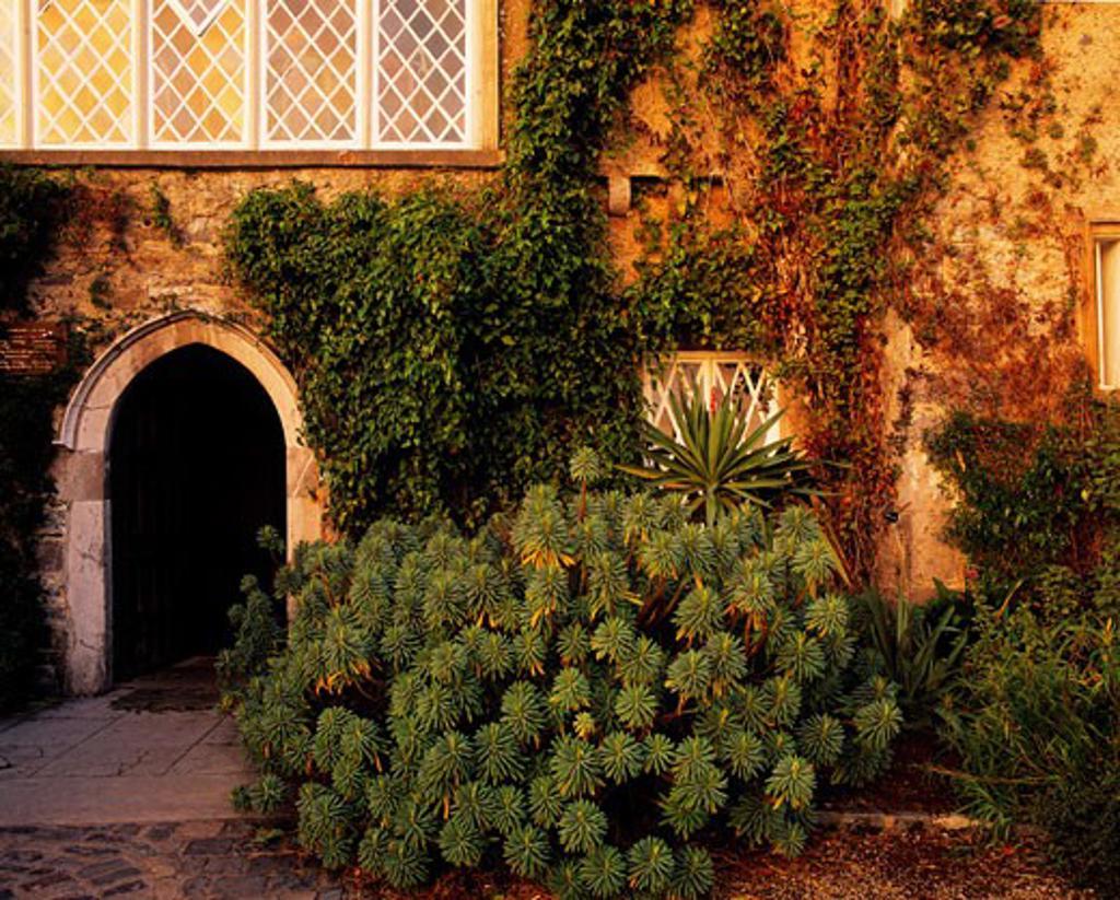 Malahide Castle, Talbot Botanic Garden, Malahide, Co Fingal, Ireland : Stock Photo