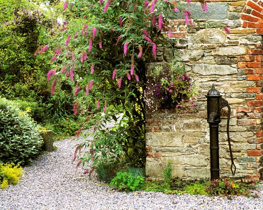 Stock Photo: 1812-1109 Old water pump, Ram House Garden, Co Wexford, Ireland