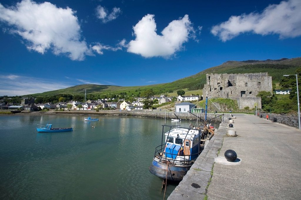 Boats in dock, Carlingford, County Louth, Ireland : Stock Photo